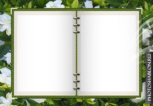 Шаблон для фотошопа общая фотография