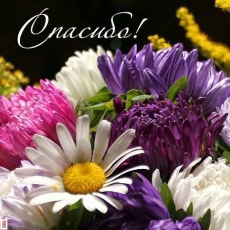 Картинка с цветами - Спасибо!