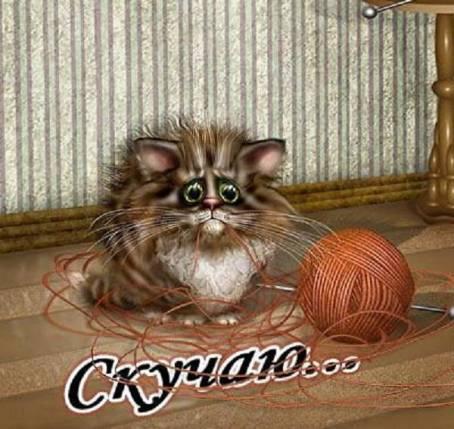 Картинка с котиком - Скучаю...