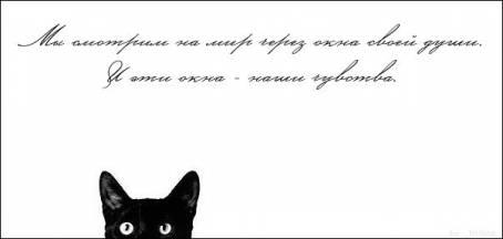 """Цитата: """"Мы смотрим на мир через окна своей..."""