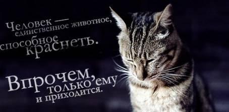 """Цитата: """"Человек - единственное животное..."""