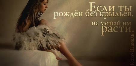 """Цитата: """"Если ты рожден без крыльев, не..."""