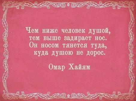 """Цитата: """"Чем ниже человек душой, тем выше..."""