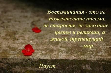 """Цитата: """"Воспоминания - это не пожелтевшие..."""