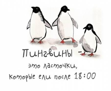 """Цитата: """"Пингвины - это ласточки, которые ели..."""