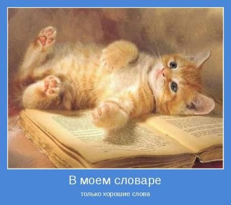 Демотиватор - В моем словаре только хорошие слова