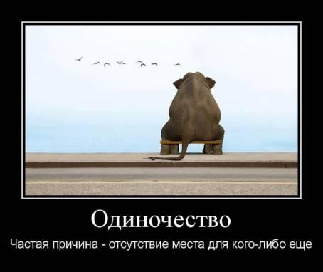 Демотиватор - Одиночество. Частая причина...