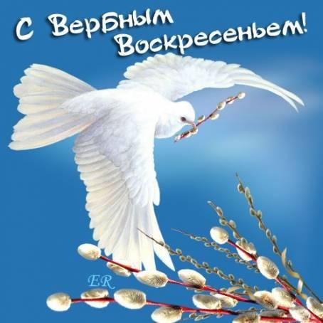 Красивая картинка - С Вербным Воскресеньем!