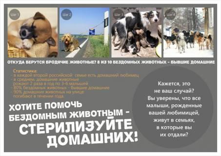 Листовка - Стерилизуйте домашних животных!