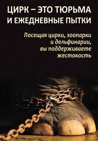 Цирк - это тюрьма и ежедневные пытки