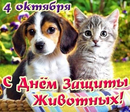 Картинка - С Днем Защиты Животных!
