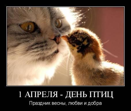 """Картинка """"1 апреля - День птиц"""""""