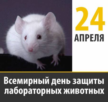 Всемирный день защиты лабораторных животных