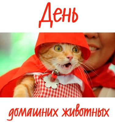 Картинка - День домашних животных