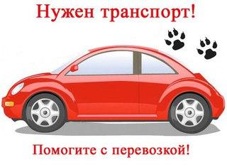 Картинка - Нужен транспорт! Помогите с перевозкой!