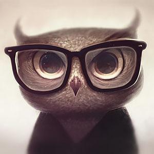 Прикольный аватар с совой в очках