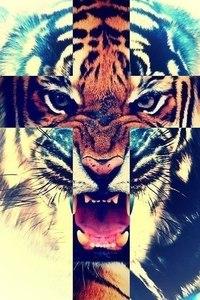 Картинка на аву - Тигр