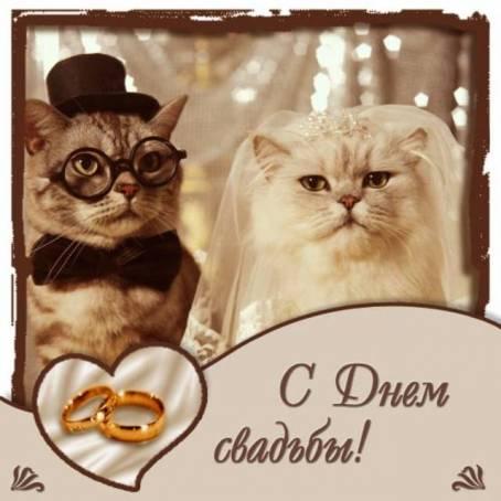 Поздравительная картинка - С Днем Свадьбы!