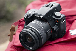 Sony SLT-A37